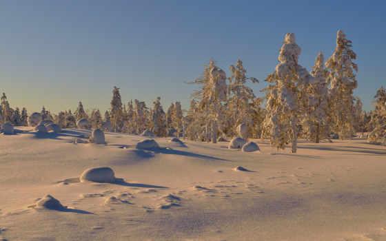 солнечный, den, zima