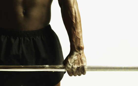 спорт, штанга, мускулы