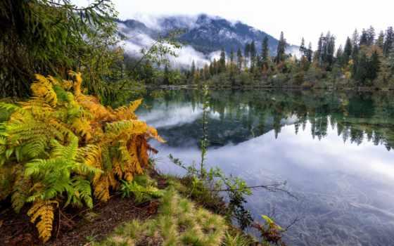 природа, горы, озеро, категория, лес, разделе, страница, trees,