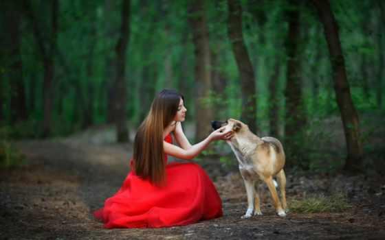 девушка в красном и пес в лесу