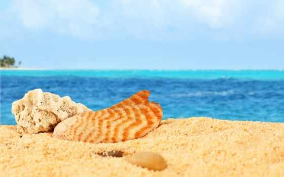 пляж, море, sun