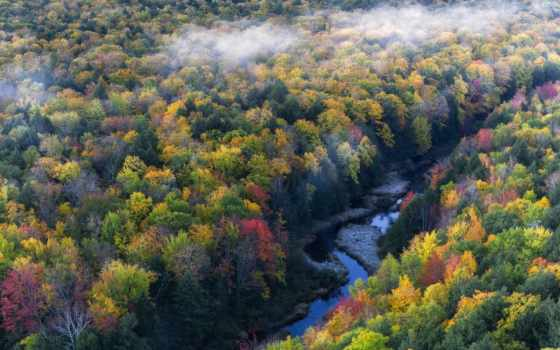 осень, лес, height, природа, река, туман,