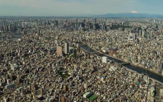 tokyo, skytree, top, взгляд, clear, english, небо, япония, дерево,