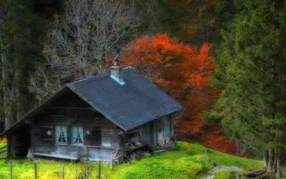 дома, house, брёвна, лесу, домов, красивые, самые, подробнее, construction, кедра, kelohouse,