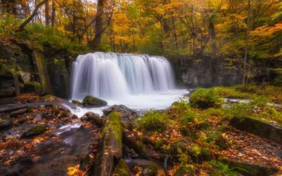 осень, водопад, mac, free, desktop, лес, изображение, macbook,