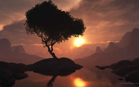картинка, sun, телефон, дерево, full, заставка, закат, исчезновение, lone, nero,