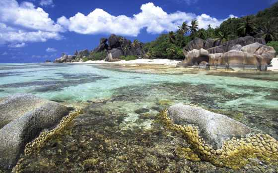 пляж, море, природа Фон № 121805 разрешение 1600x1200