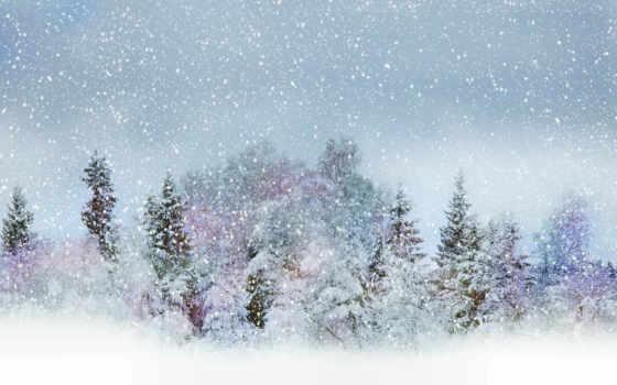 winter, снег, trees, природа, картинка, бело, лес, mix,