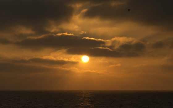 взлёт, природа, sun, rey, picapedrero, поле, дорога, shak,