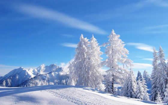 winter, wash, палуба, tundra, сказ