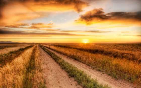 поле, road