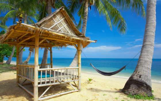 берегу, океана, беседка, навесом, лазурном, гамак, между, заказать, посещение, palm, пляж,