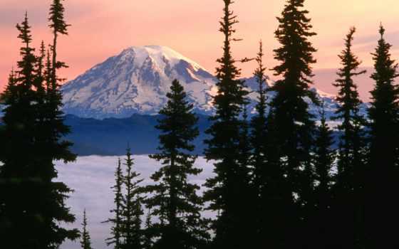 горы, снежные, лесом