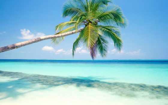 more, море, пляж