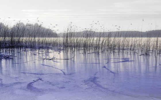 озеро, камыш, лед, лес, lakes, закат, байкал, небо,