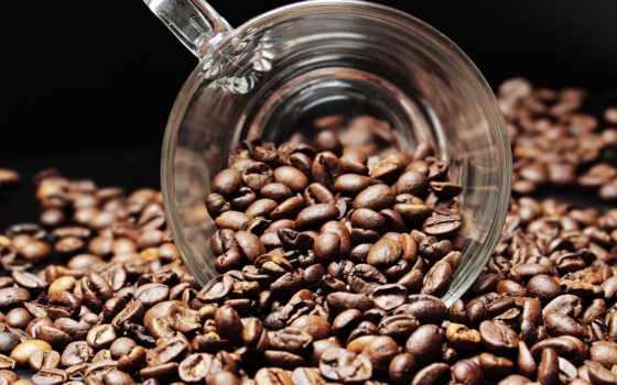 coffee, chinalogist, китаем, una, кафе, жаркое, закупок,