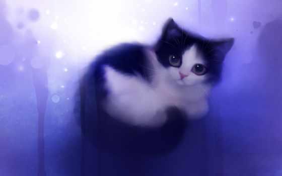 тюлень, nice, animal, рисунок, кот, сердце, feline, best, white, котенок, взгляд