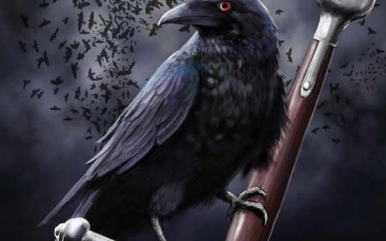 ворона, fantasy, art