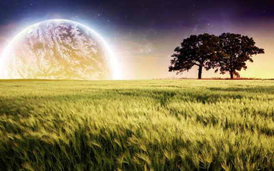 природа, amazing, pictures