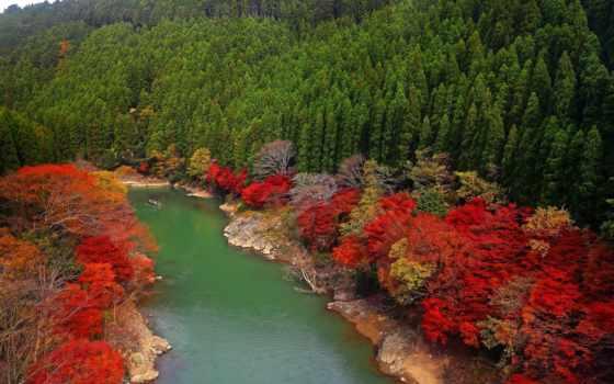 осень, река, фото, miriadna, gallery, азия, лес,