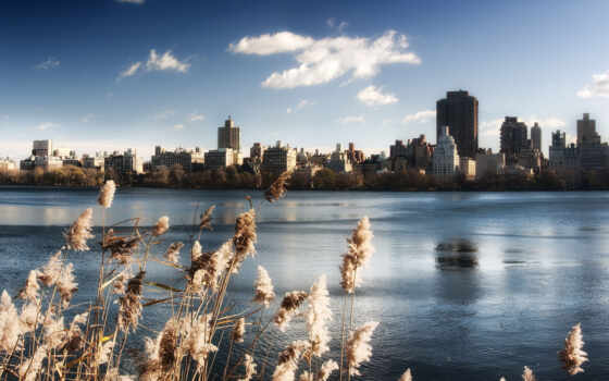 new, york, park