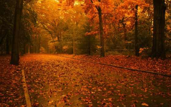природы, красавица, осень, уже, пушкин, небо, дышало, осенью,