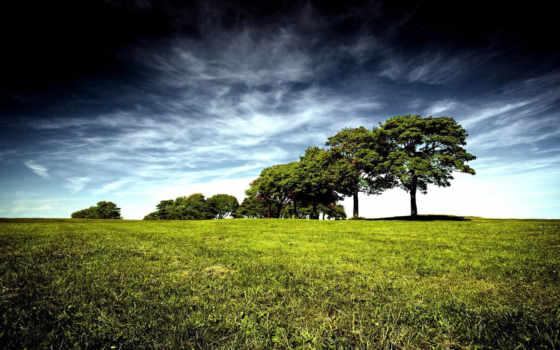 amazing, best, природа