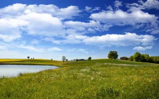 summer, поле, клипарты, зеленое, картинка, природа, png, sun, красотой, highlightsstory, категории,