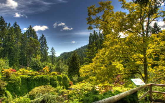 природа, сады, канада