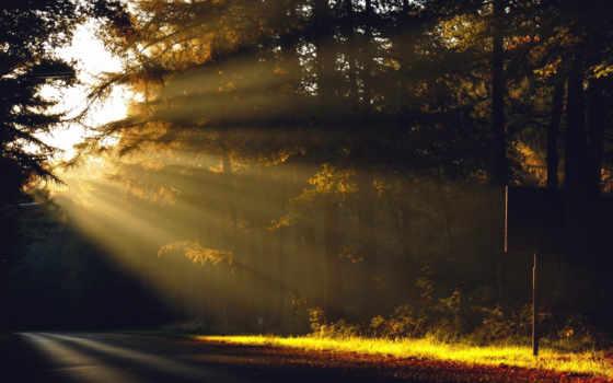 рассвет, sun, утро