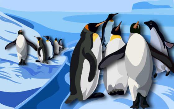 графика, пингвины, антарктида