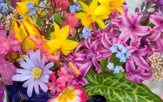 рождения, днем, цветы