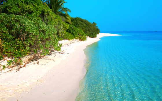 пляж, пальмы, пейзажи -, mobile, gifs, песок, страница, июнь, iphone,