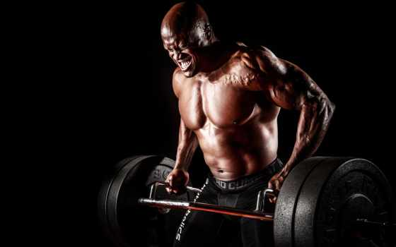 gym, спорт, workout, фитнес, картинка