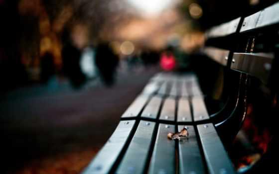 park, osen, листь, листок, нравится, скамейка,