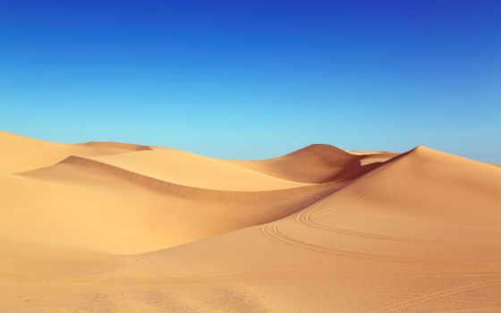 dunes, пустыня, песок, dune, algodones, free,