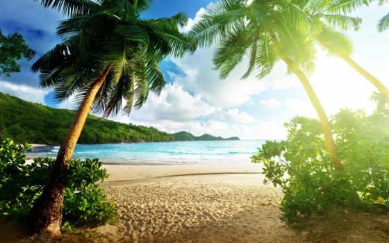 пляж, качестве, море, фотообои, thai, хорошем, online, моря, пляжи, free,