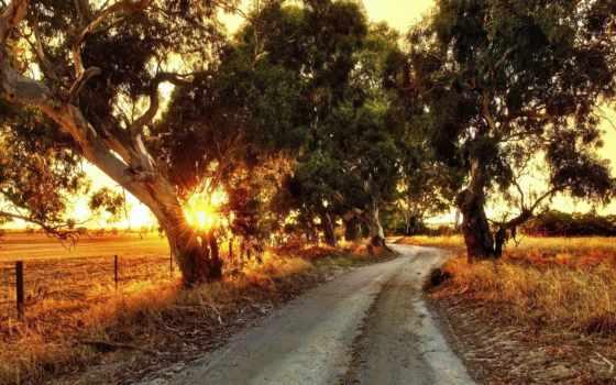 австралия, дорога, free