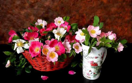 cvety, розы, розовые, лепестки, картинка, корзина, glass, чайные,