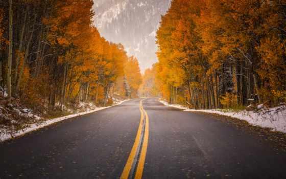 осень, дорога, природа
