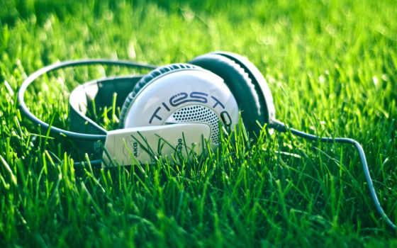 AKG, K530, наушники, музыка, трава, шнур, tiesto