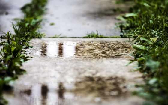 макро, дождь, лужа, depth, трава, hdwallsource, мостовая, поле, trucks,