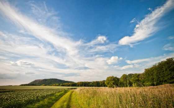 природа, landscape, поле, горизонт, summer, небо, дорога, oblaka, растения,