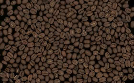 coffee, beans, текстура, фон, зерно,