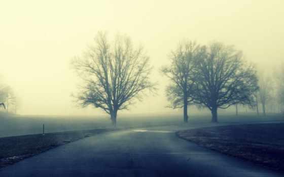 путь, они, гвардия, images, дорога, trees, mobile,