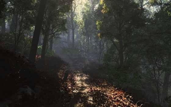 лес, orman, free, trees, art, осень, тропинка, stock,