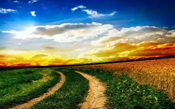 природа, поле, landscape, трава, oblaka, небо, закат, дороги,