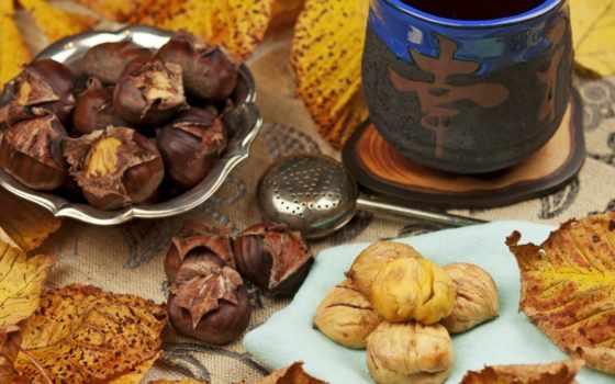 каштановый, листья, осень, еда,