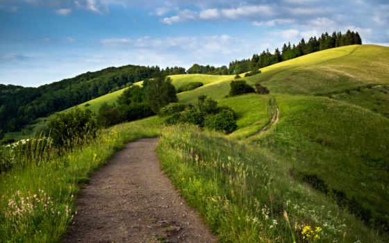 hill, desktop, планшетный