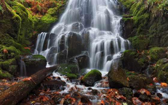 falls, columbia, река, oregon, фея, ущелье, wahkeena, мох, usa, осень,